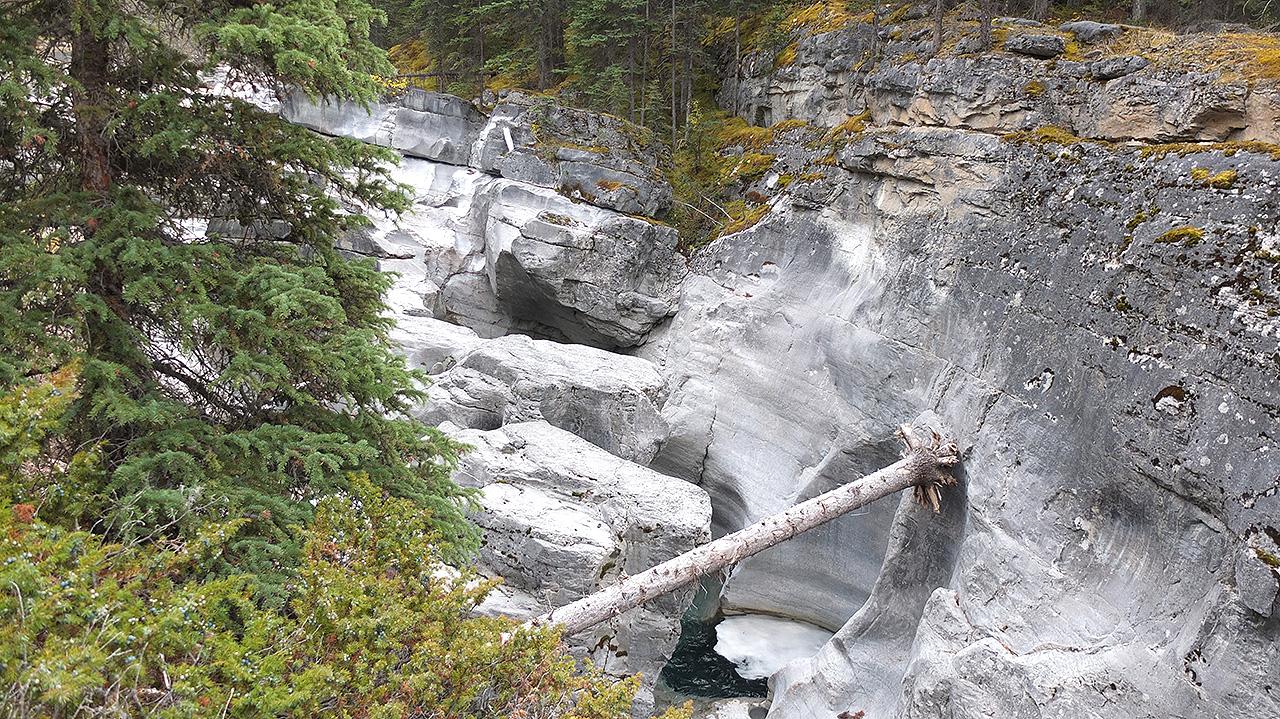 橋のように流木が絶壁の間に挟まれている。自然に掛かっているのか?