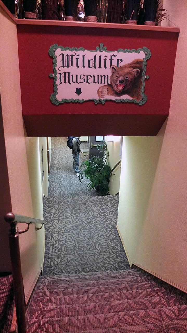 本当にホテルの真下にあるミュージアム。入り口でトークンを購入して入れました。