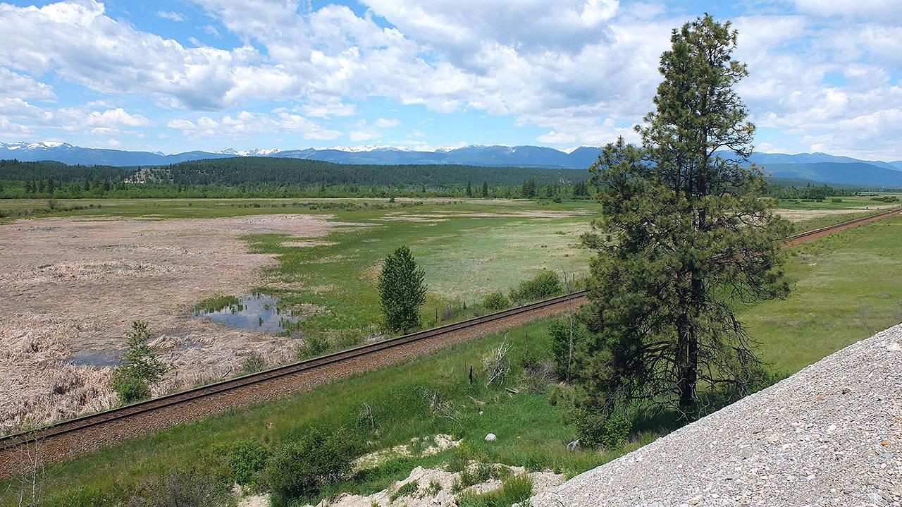 車で移動中に、昨年にジャスパーへ行く際に乗ったVIA鉄道のレールが!地平線までずっと続いてます。