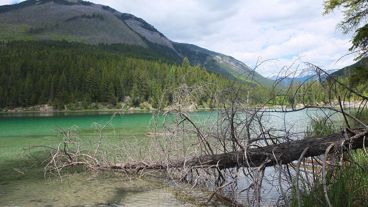 【カナダワーホリ】山の中のLussier Hotsprings(ルシエラ温泉)でゆっくり