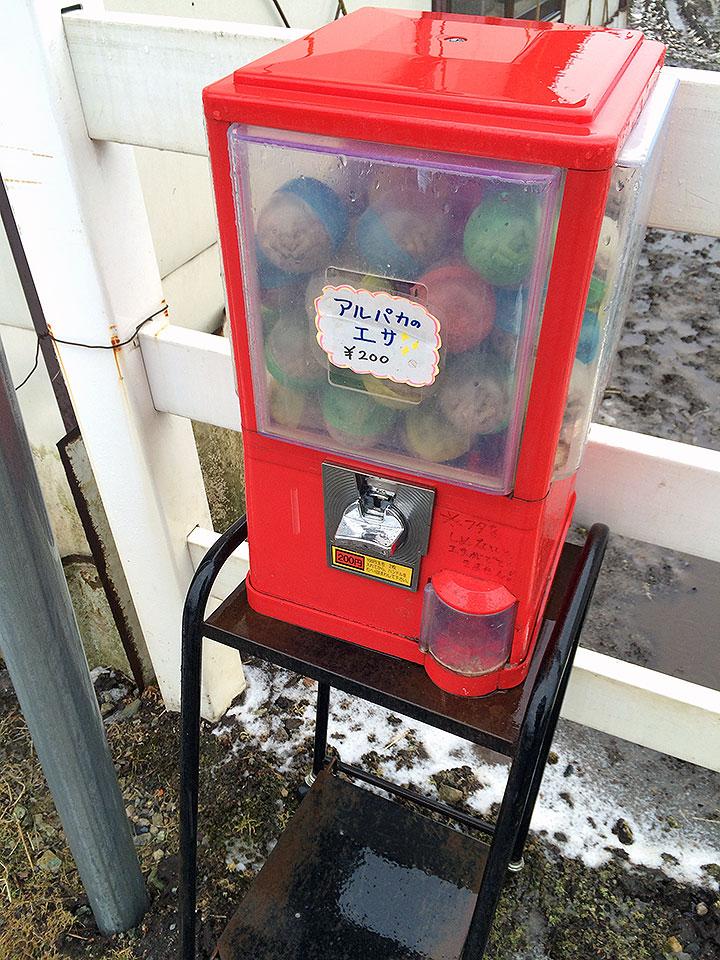 こちらはアルパカの餌。ガチャガチャで販売中。晴れていればここでも触れ合いが出来るのでしょう。