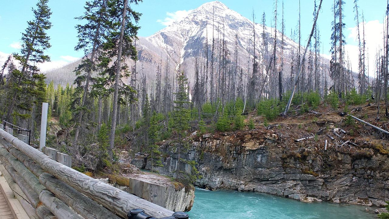 個人的に好きな光景。山+川とか森とか湖、2つ3つ重なると凄いテンション上がりますね!