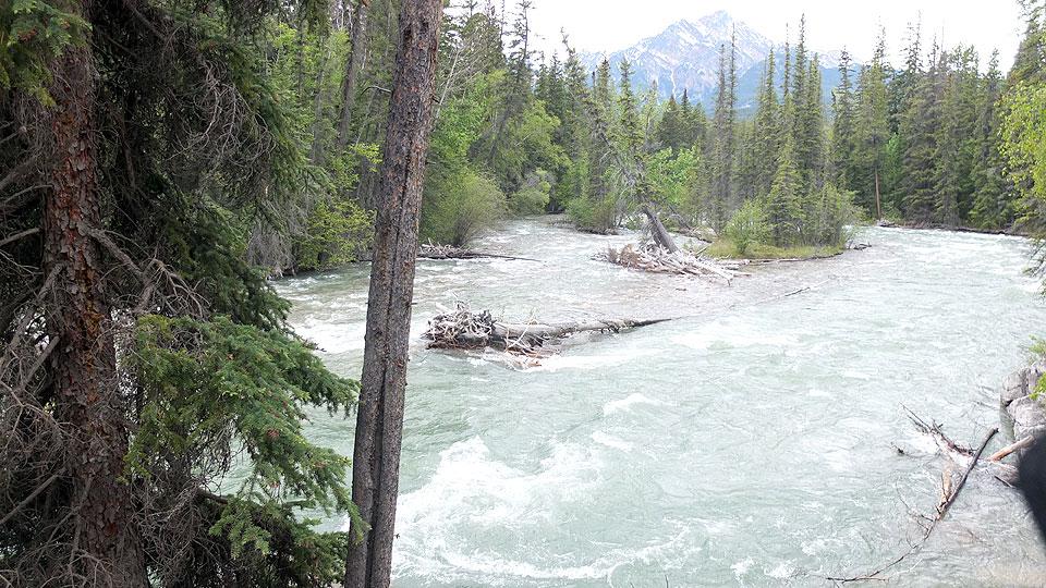 マリーン・キャニオンの裏手の山道を歩く。前日に雨が降ったようで、川の水量も増加していました。