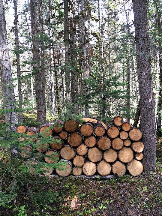 途中でキャンプ用に薪が大量に置いてありました。