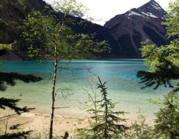 【カナダ ジャスパー】Mount Robson(ロブソン山)ハイキング、Jasper Brewingでクラフトビールを飲む