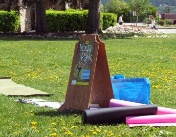 「Yoga Park」と書かれた看板。ヨガマットも貸してくれたりと、どうやらフリーで参加出来る模様。