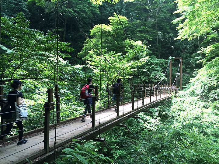 舗装された道を外れて山道を少し歩くと、橋が!テンション上がりますね。