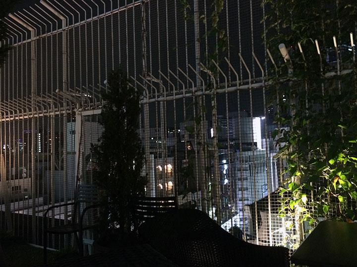渋谷のど真ん中なので、眼下にはネオンが輝く街が。