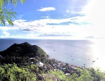 【フィリピン田舎旅】沖でシュノーケリング&軽い登山も楽しめるアポ島での日常