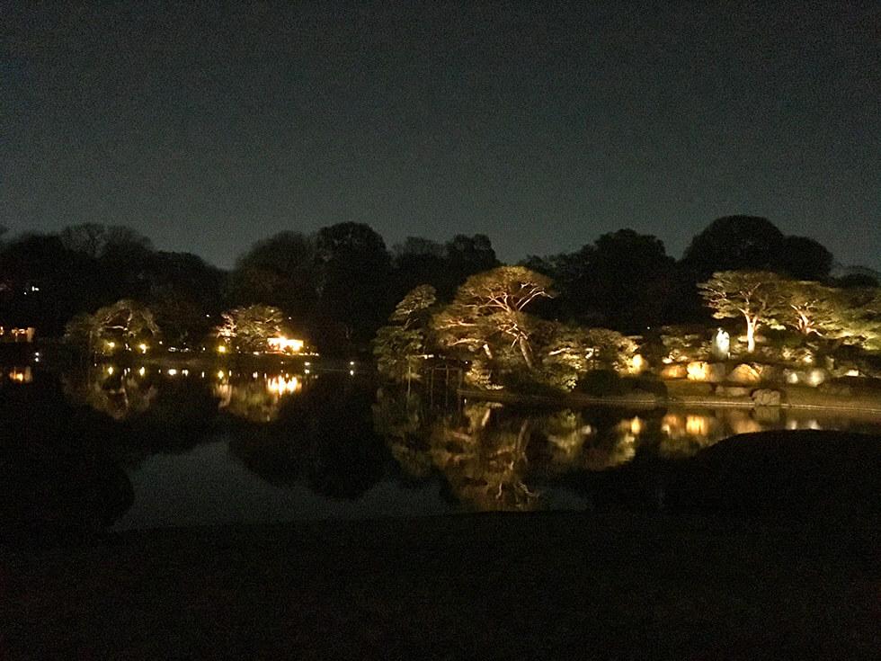 中央付近にある中の島もライトアップされて綺麗になっていました。