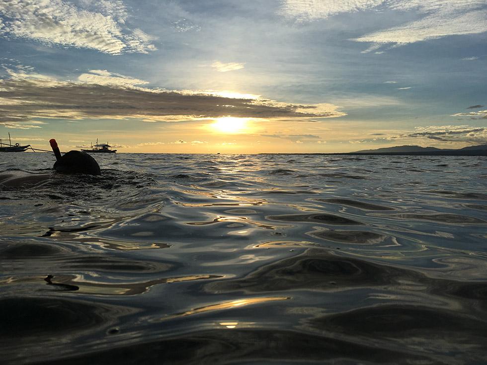 夕日が沈むのを眺めならシュノーケルで泳ぐ